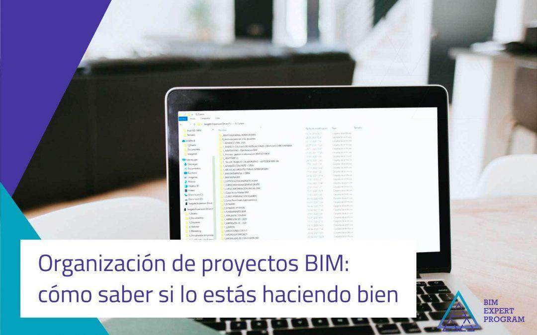Organización de proyectos BIM: cómo saber si lo estás haciendo bien