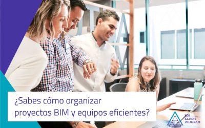 ¿Sabes cómo organizar proyectos BIM y equipos eficientes?